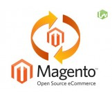 Magento Version Upgrade