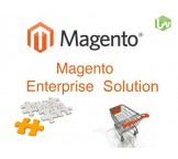 Magento Enterprise Edition Development and Implementation